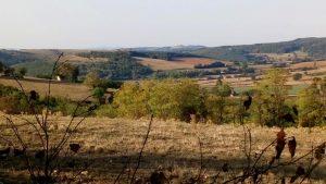 Randonnée en Saône et Loire entre Cluny et Buxy