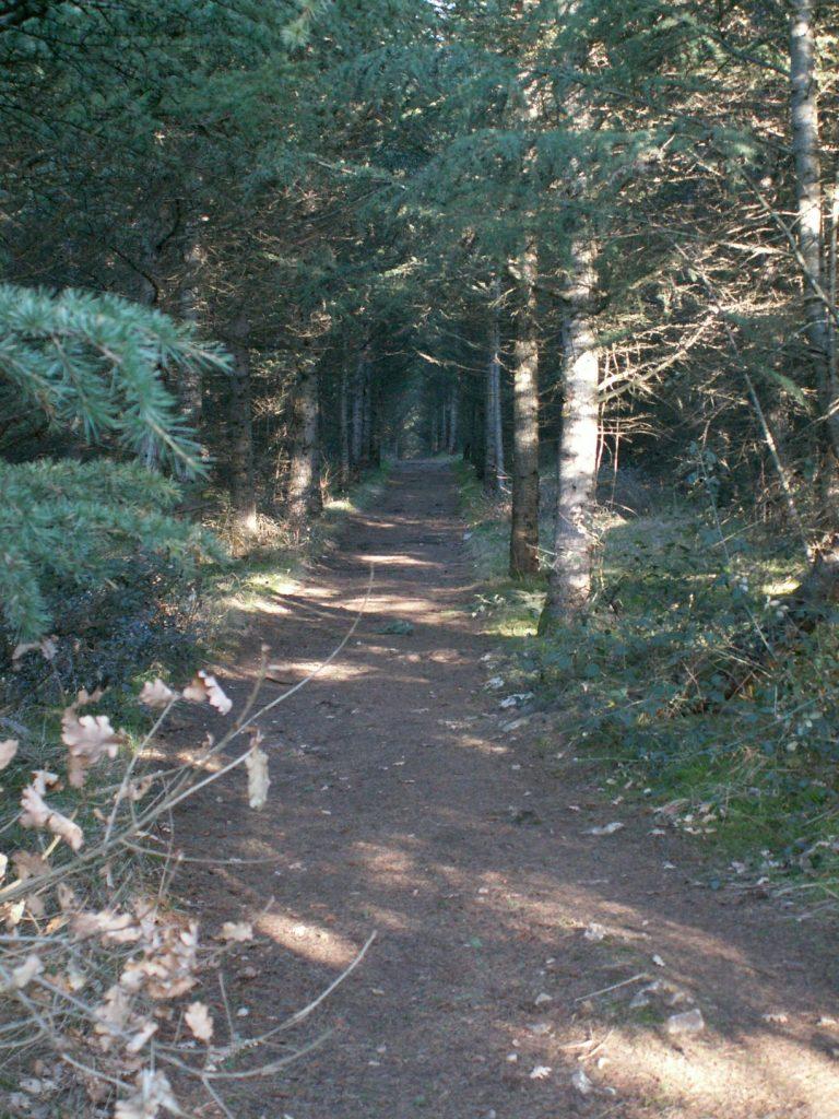 randonnée la madone - Gîte en Saône et Loire